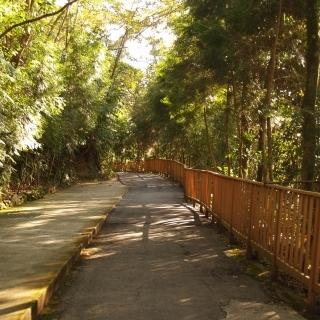 埔里哲學之路-埔里哲學步道-哲學之路-埔里高工自行車道-地母廟自行車道-樂活步道