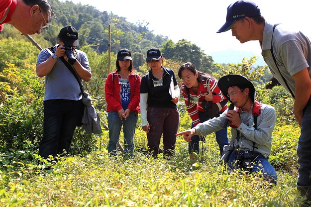 2015日月潭埔里「蝴蝶低碳輕旅行」活動即將於7月展開