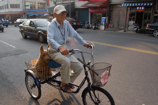埔里-自行車-失智症