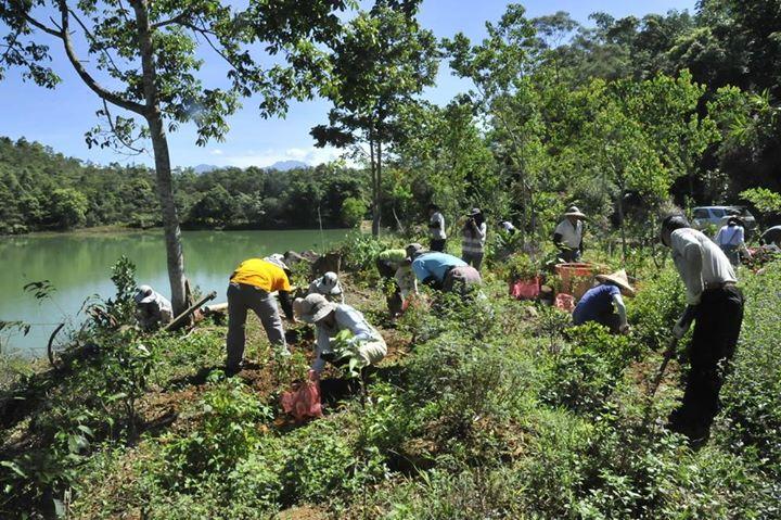 鄰里蝴蝶棲地營造活動,8月21日在馬璘窟種下400多棵蜜源植物(圖片來源:新故鄉文教基金會)